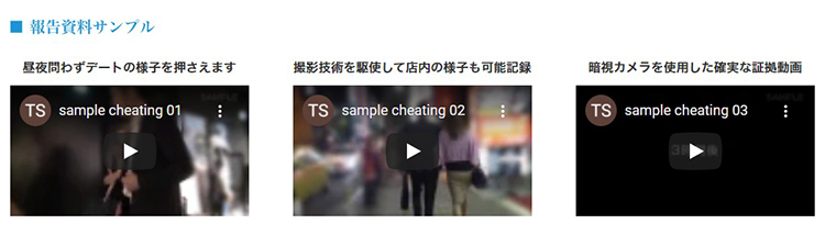 総合探偵社TSの報告資料サンプル